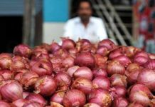 government-may-stop-buying-onion-from-farmers