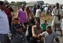 Gwalior--Wounded-by-killing-axes-of-20-cows