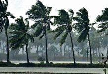 rain-and-winds-in-20-districts-of-madhya-pradesh-due-to-fani-cyclone-