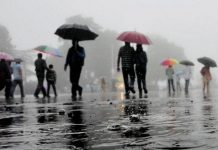 cyclone-fani-effect-in-madhya-pradesh-heavy-rain-in-many-district-