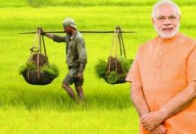 modi-government-gift-for-farmers-4000-per-acre-direct-transfer-in-account