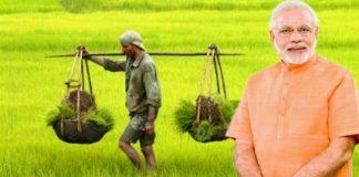modi-government-gift-for-farmers-4000-per-acre-direct-transfer-in-account