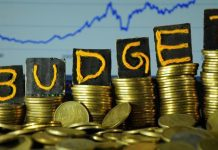 know-what-comescheaper-and-what-is-expensive-in-budget-2019