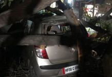 heavy-wind-waves-tree-fall-on-cars-in-gwalior