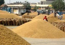 mandi-board-targeted-employees-and-traders-who-fraud-with-farmers