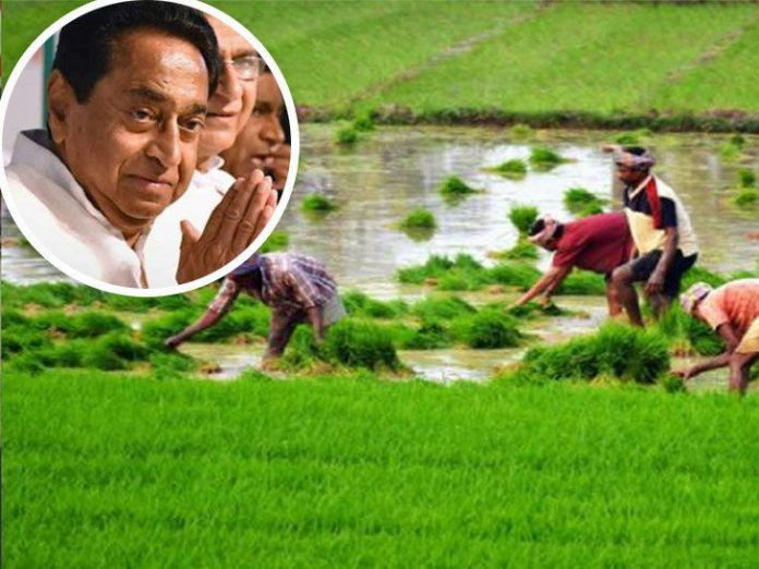 Farmers'-debt-relief-after-Lok-Sabha-elections