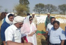 collector-visit-wheat-procurement-center