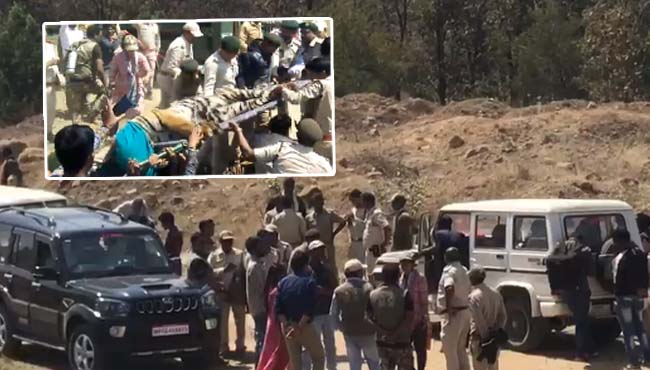 -Tigers-caught-after-six-hour-rescue-operation-in-betul