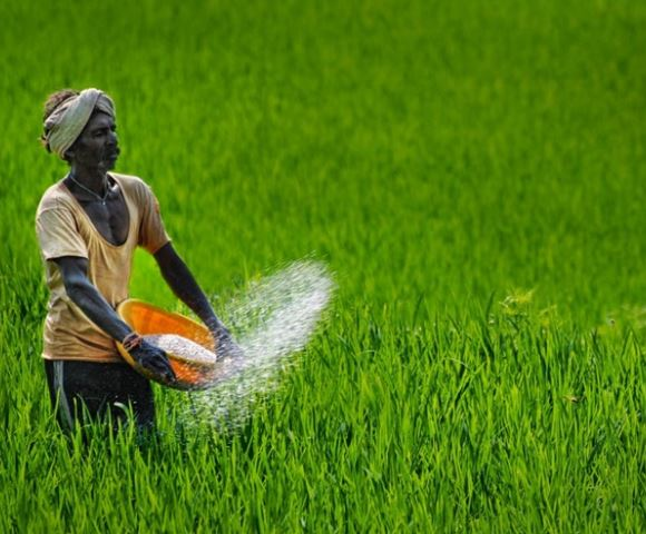 agriculture-department-wrote-letter-to-collector-for-release-farmer-debt-amount