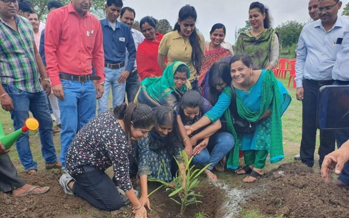 Plants-planted-by-journalists-in-BDA-Colony
