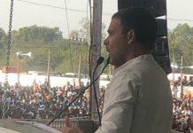 madhya-pradesh-live-rahul-gandhi-rally-in-bhopal-jamburi-maedan-kusmariya-join-congress
