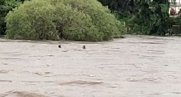 two-young-men-jumped-to-save-woman-drowning-in-river-
