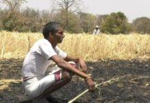 fire-in-farmer-field--destroy-five-acer-area-in-jabalpur