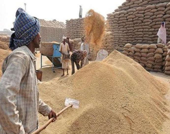 Kamalnath-government-will-get-the-date-of-purchase-of-rice