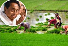 MP--In-the-'debt-waiver'-of-farmers