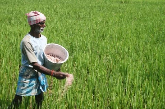 farmer-debt-waiver-money-stuck-due-to-code-of-conduct-bank-sending-recovery-notice-to-farmers