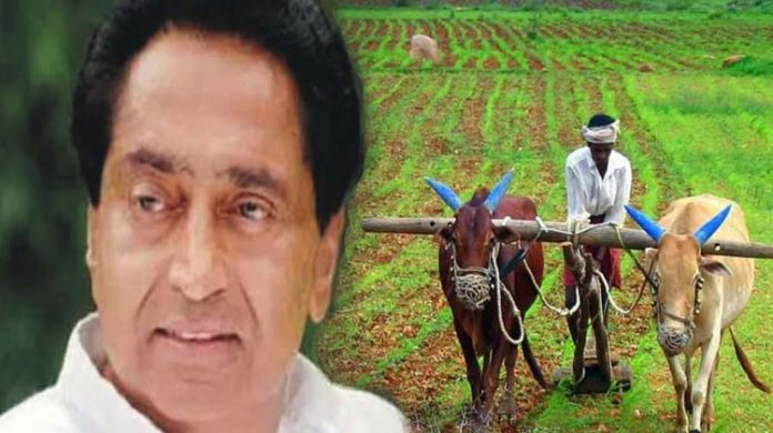Kamal-Nath-government-makes-special-plan-to-double-farmers'-income