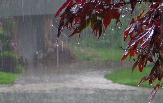 skymet-predicts-this-year-monsoon-on-late-enter-in-madhya-pradesh-