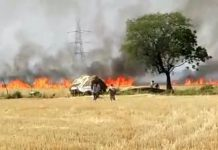 fire-in-250-acer-agriculture-field-in-jabalpur