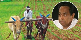 What-happened-to-the-farmers-on-the-name-of-Debt-relief-in-madhya-pradesh