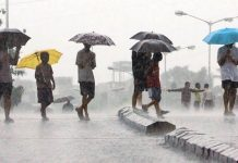 weather-update-news-rain-in-many-district-in-madhya-pradesh-