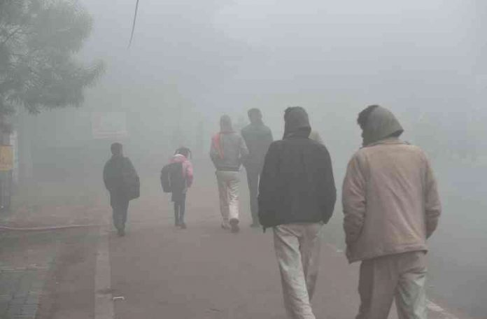cold-wave-alert-in-these-district-of-mp