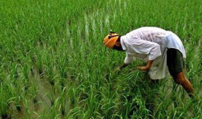 finance-minister-allocate-six-thousand-crore-to-agri-department-