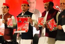 mp-election-samajwadi-party-president-akhilesh-yadav-release-manifesto-in-madhya-pradesh-