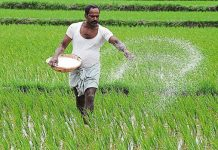 farmers-will-get-soil-testing-free-of-cost-in-mp