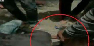 man-forced-to-rub-nose-on-shoes-in-mandsaur-madhya-pradesh