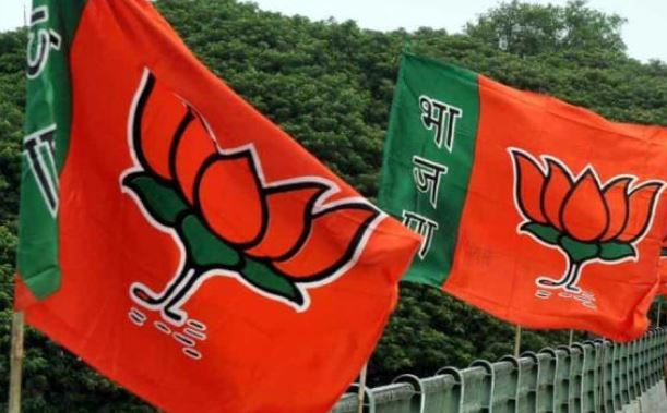 now-bjp-will-prepared-to-announce-candidate-on-remaining-14-seat-in-mp