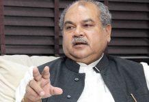tomar-said-bjp-will-win-Gwalior-and-murena-seat