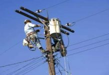 the-power-cut-for-maintenance-then-cut-the-lineman-hand-paws-guna-mp