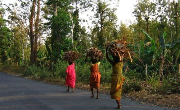 -Big-relief--Tribal-people-will-not-be-evicted-from-forest-land--