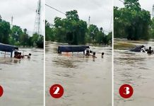 pickup-drowned-in-flood-in-sehor-during-cross-the-bridge-