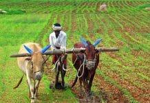 पीएम किसान सम्मान निधि