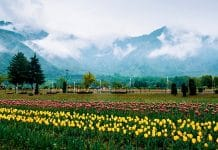 anyone can buy land in jammu-kashmir and ladakh