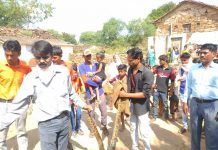 python found in residential area of damoh